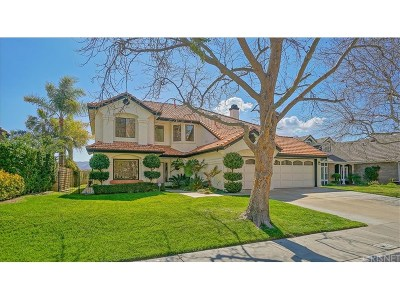 Saugus Single Family Home For Sale: 22238 Circle J Ranch Road
