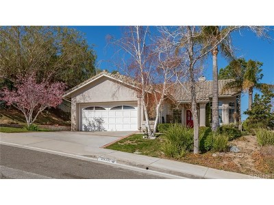 Canyon Country Single Family Home For Sale: 29331 Canyon Rim Place