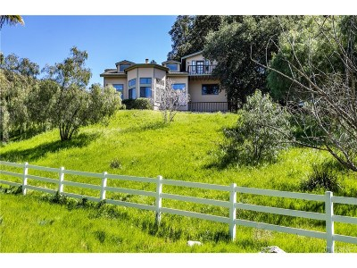 Newhall Single Family Home For Sale: 16302 Placerita Canyon Road