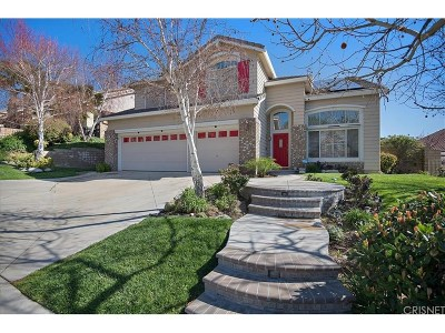 Saugus Single Family Home For Sale: 28622 Haskell Canyon Road