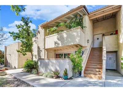Agoura Hills Condo/Townhouse For Sale: 5800 Kanan Road #284
