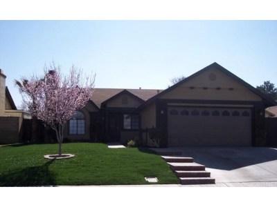 Lancaster Single Family Home For Sale: 1734 Viridan Avenue