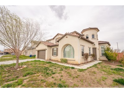 Palmdale Single Family Home For Sale: 4041 Lariat Drive
