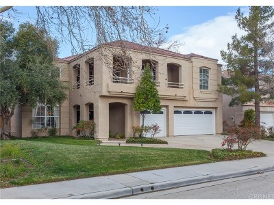 Palmdale Single Family Home For Sale: 38759 Sunnyvale Street
