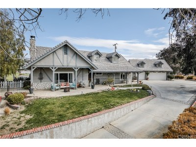 Agua Dulce Single Family Home For Sale: 10726 Cleat Road