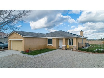 Lancaster Single Family Home For Sale: 43028 Yaffa Street