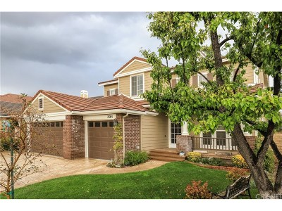 Canyon Country Single Family Home For Sale: 28304 Linda Vista Street