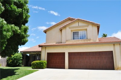 Palmdale Single Family Home For Sale: 40344 Pinnacle Way