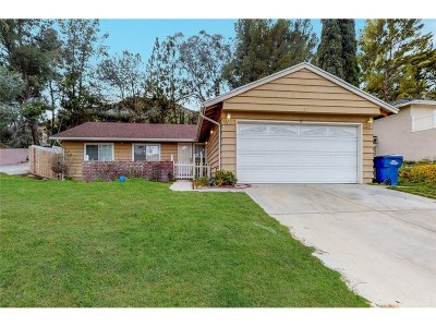 Santa Clarita, Canyon Country, Newhall, Saugus, Valencia, Castaic, Stevenson Ranch, Val Verde Single Family Home For Sale: 29011 Flowerpark Drive