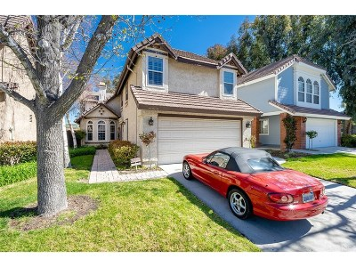Canyon Country Single Family Home For Sale: 19809 Terri Drive