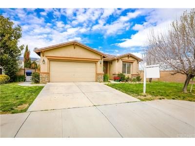 Lancaster Single Family Home For Sale: 2829 East Avenue J4