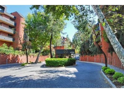 Encino Condo/Townhouse For Sale: 4792 Park Encino Lane #102