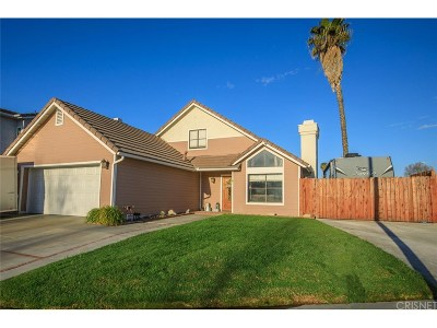 Castaic Single Family Home Active Under Contract: 29149 Diablo Place