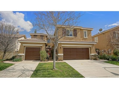 Castaic Single Family Home For Sale: 30416 Mallorca Place