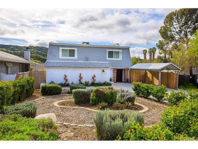 Canyon Country Single Family Home For Sale: 29642 Louis Avenue