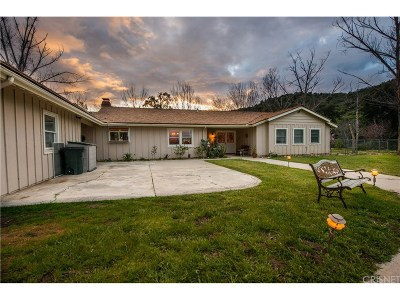 Single Family Home For Sale: 26615 Mountain Park Road