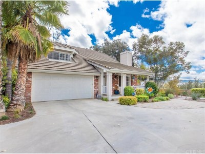 Single Family Home For Sale: 23740 Cameron Court