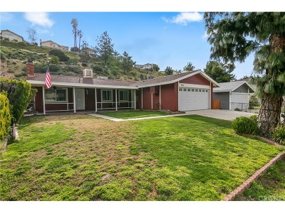 Canyon Country Single Family Home For Sale: 29314 Florabunda Road