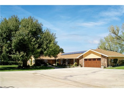 Single Family Home For Sale: 16217 Warmuth Road