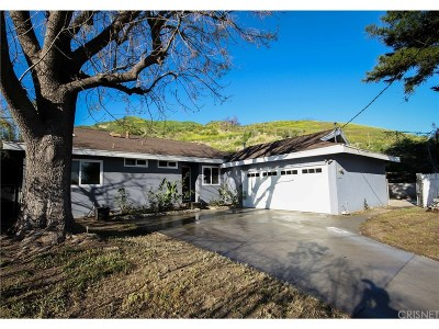 Lakeview Terrace Single Family Home For Sale: 10439 Kurt Street