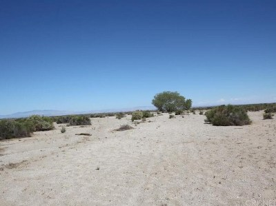 Palmdale Residential Lots & Land For Sale: Vac/Vic 85 Ste/Ave P14
