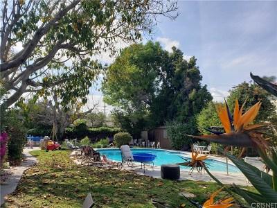 Encino Single Family Home Active Under Contract: 4964 Rubio Avenue
