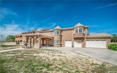 Palmdale Single Family Home For Sale: 4025 East Avenue T2