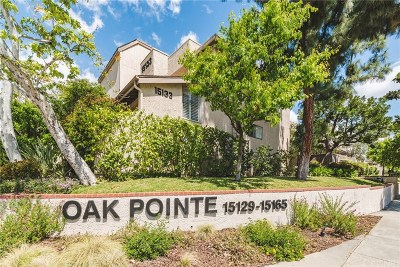 Sherman Oaks Condo/Townhouse For Sale: 15129 Magnolia Boulevard #C