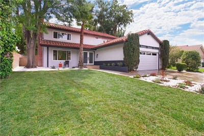 Northridge Single Family Home For Sale: 18738 Merridy Street