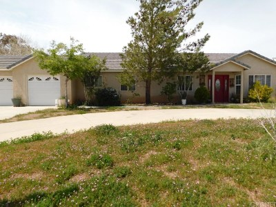 Palmdale Single Family Home For Sale: 36355 Burnwell Court