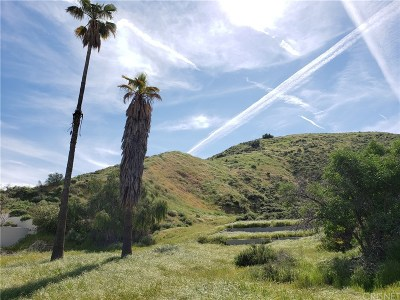 Canyon Country Residential Lots & Land For Sale: 17850 Scherzinger Ln