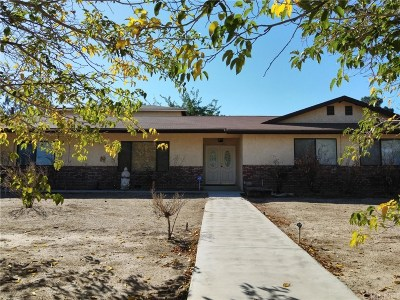 Palmdale Single Family Home For Sale: 3734 East Avenue T4