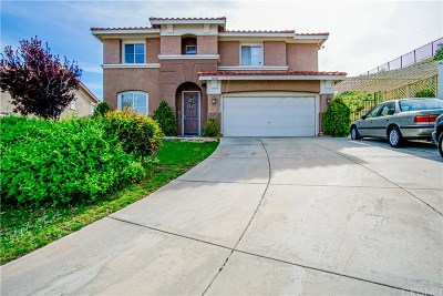 Palmdale Single Family Home For Sale: 38600 Louise Lane