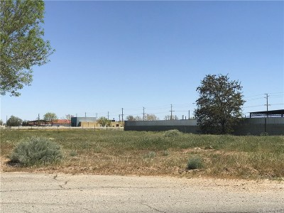 Palmdale Residential Lots & Land For Sale: Vac/25th Ste/Vic Avenue P14
