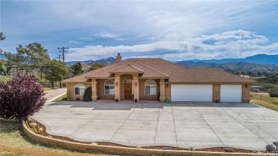 Agua Dulce Single Family Home For Sale: 33121 Canyon Quail Trails