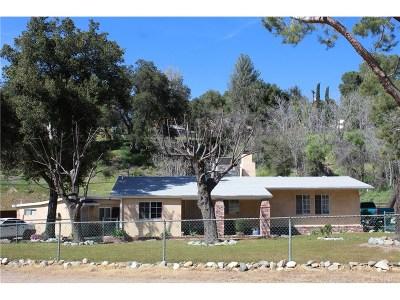 Agua Dulce Single Family Home For Sale: 13301 Sierra Hwy
