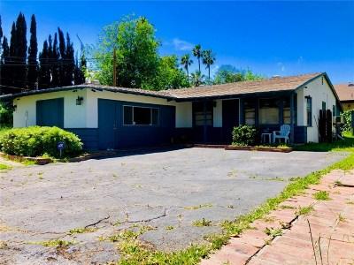 Granada Hills Single Family Home For Sale: 11063 Louise Avenue