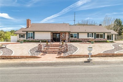 Palmdale Single Family Home For Sale: 714 Lisa Street