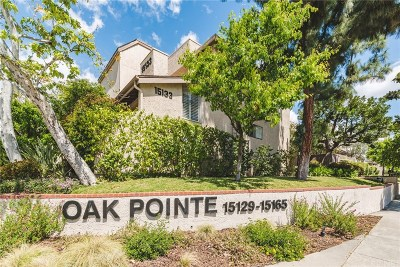 Sherman Oaks Condo/Townhouse For Sale: 15165 Magnolia #D