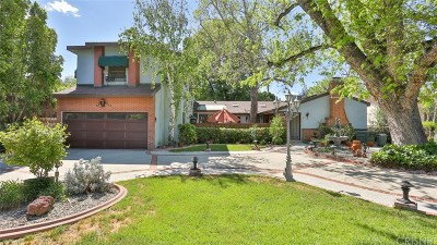 Single Family Home For Sale: 6455 Langdon Avenue
