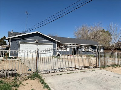 Palmdale Single Family Home For Sale: 16311 Coolwater Avenue
