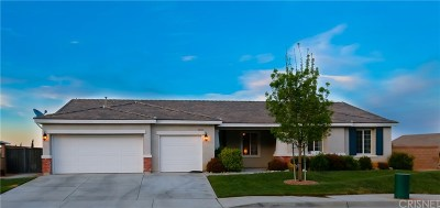 Palmdale Single Family Home For Sale: 40432 Tiger Way