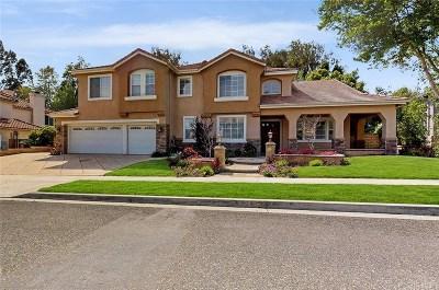 Simi Valley Single Family Home For Sale: 2863 Cimmaron Avenue