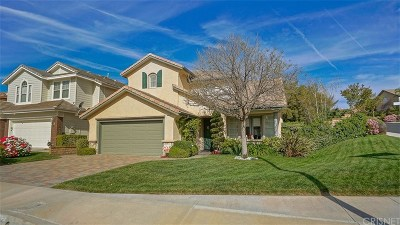 Saugus Single Family Home For Sale: 28869 Cedar Ridge Court