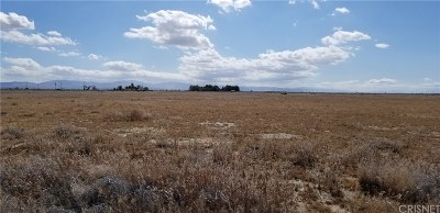 Palmdale Residential Lots & Land For Sale: Vac/102 Ste Drt/Vic Avenue M6