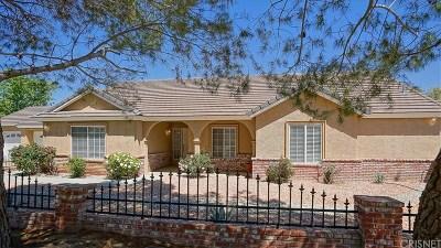 Agua Dulce Single Family Home For Sale: 11425 Durango Lane