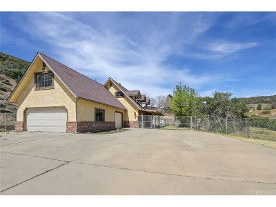 Los Angeles County Single Family Home For Sale: 9120 Lost Valley Ranch Road