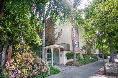 Sherman Oaks Condo/Townhouse Active Under Contract: 14850 Hesby Street #202