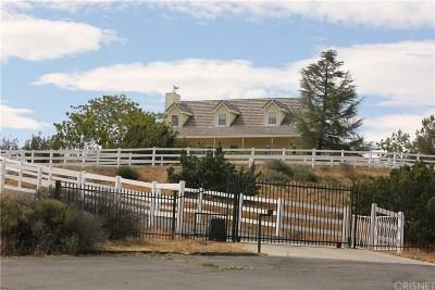 Agua Dulce Single Family Home For Sale: 9610 Escondido Canyon Road