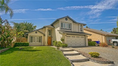 Castaic Single Family Home For Sale: 27634 Quincy Street